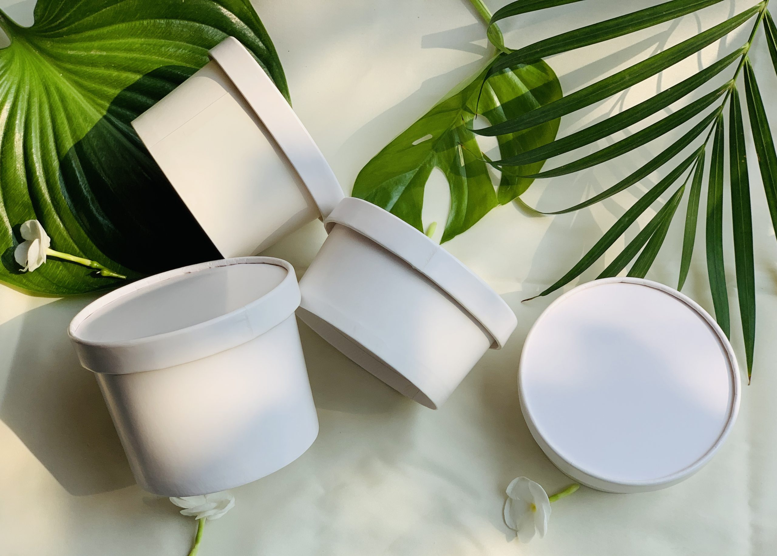 disposable food containers - Aecoz